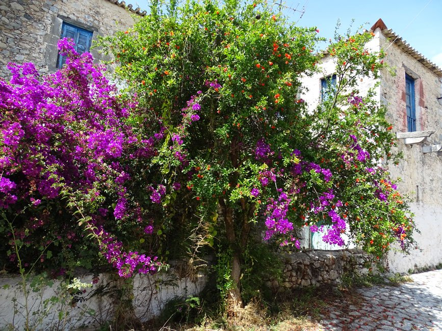 Foto's van gasten vakantie Peleponnesos
