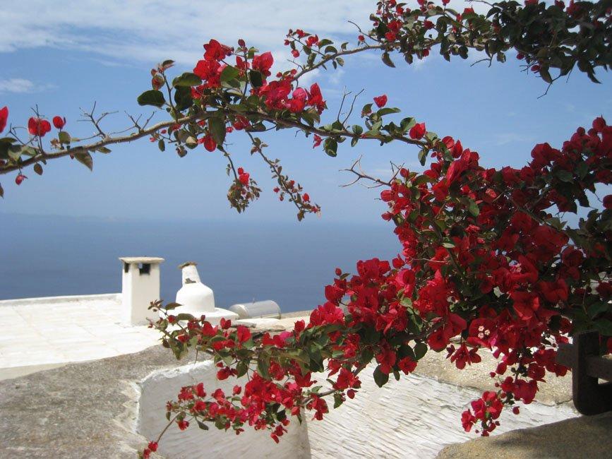 Foto's van gasten vakantie Tinos