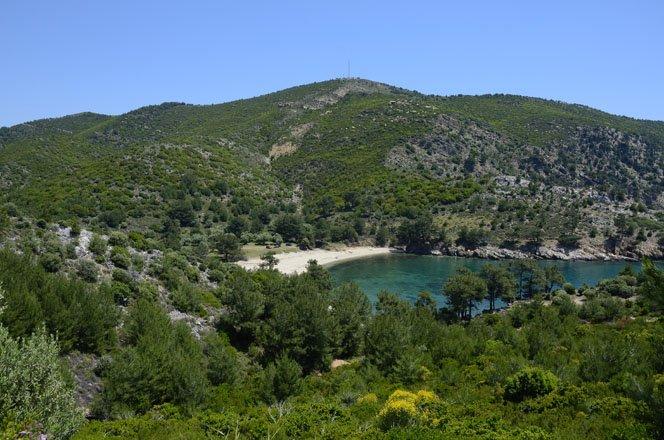 vakantie griekenland, bestemming thassos