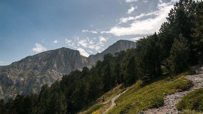 Excursies vanaf Pilion
