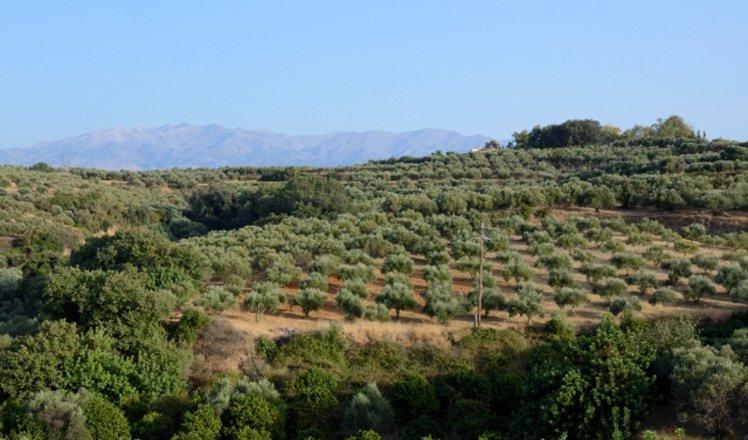 het dorp kamisiana op west-kreta